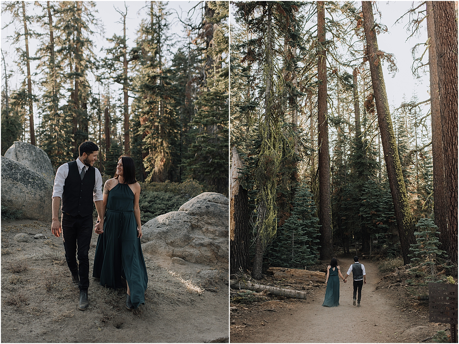 the 5 best locations to elope in california with redwood national park elopement photographer naomi levit