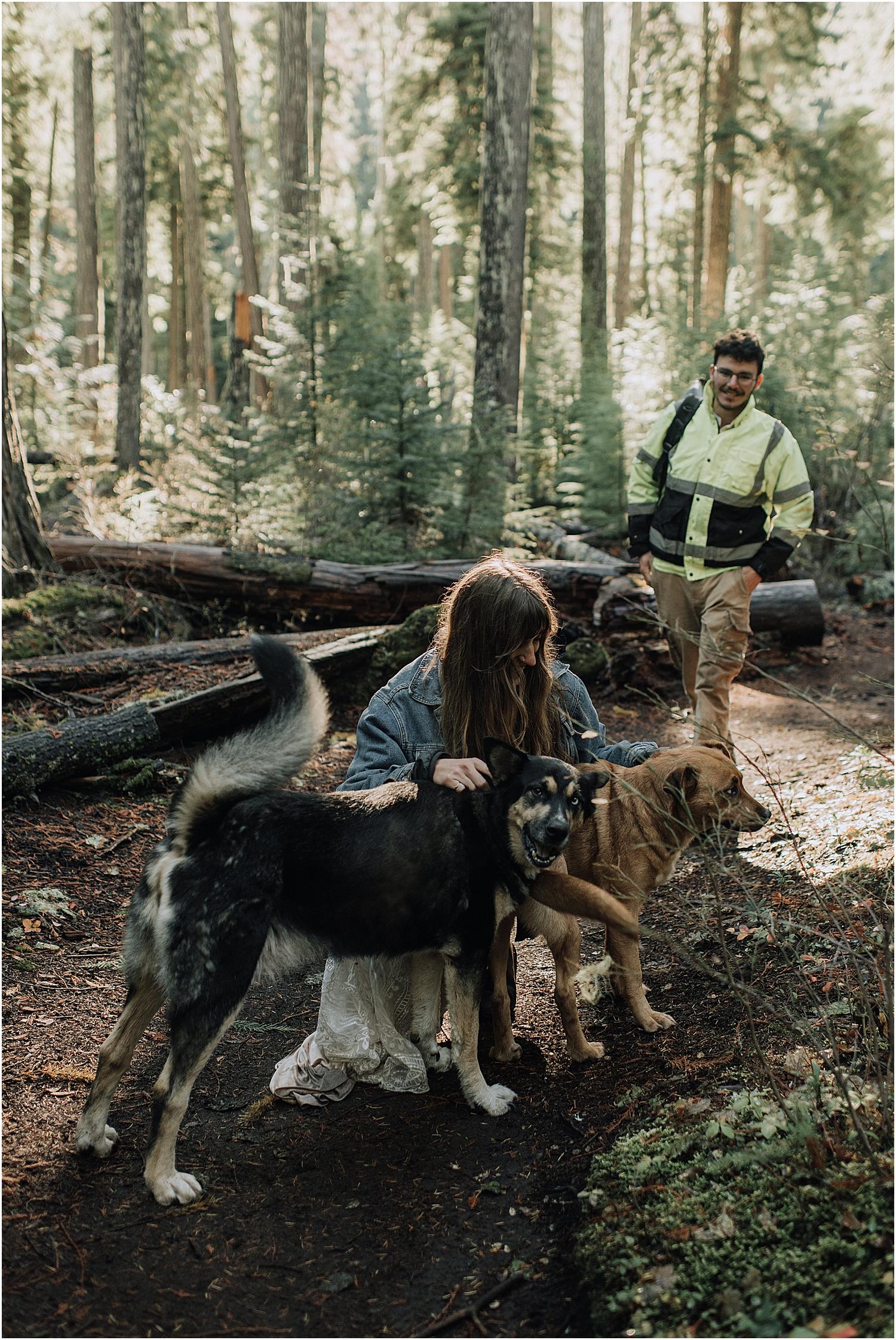 oregon waterfall adventure elopement inspiration at proxy falls with destination wedding photographer naomi levit