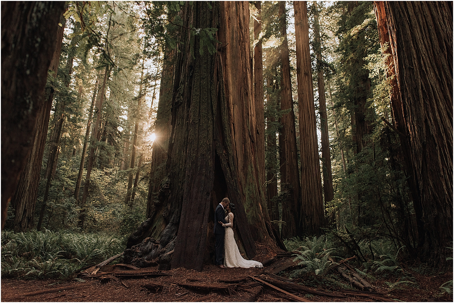 redwood national park adventure elopement with wedding photographer naomi levit