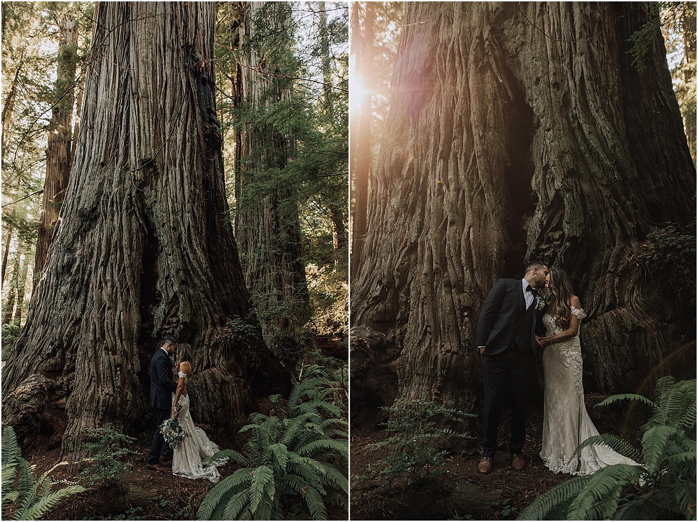 jessica and derek's campground forest wedding in trinidad california